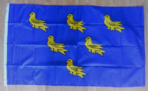 Sussex Large County Flag - 5' x 3'.